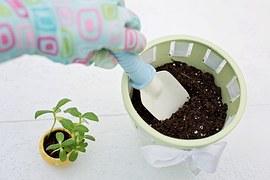 planting-783342__180