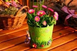 spring-800240__180