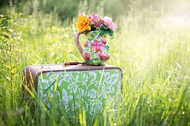 summer-still-life-785231__180