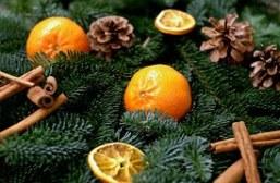 tangerines-1087060__180