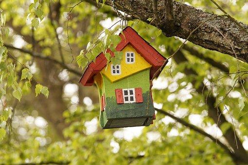 tree-3152596__340 neu