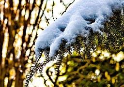 winter-651050__180