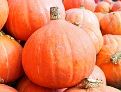 pumpkins-469593__180